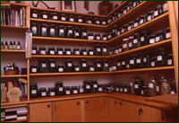 Donna's office with herbal remedies